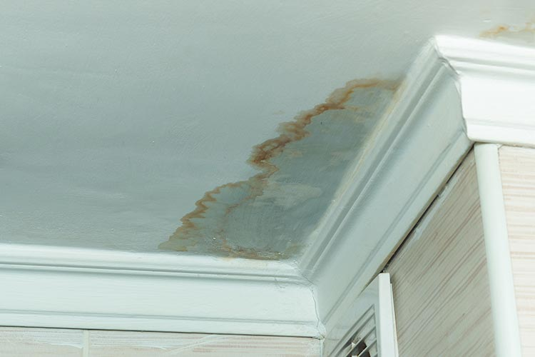 Daklekkage in Hoofddorp, snelle reparatie kan ernstige waterschade voorkomen.